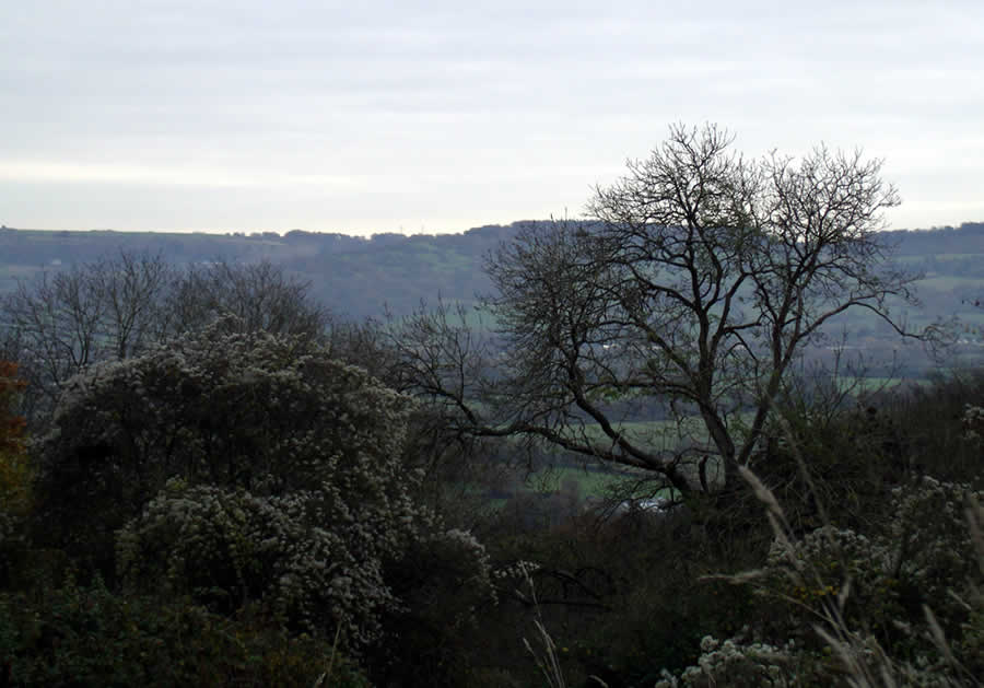View From Top Of Churchdown Hill