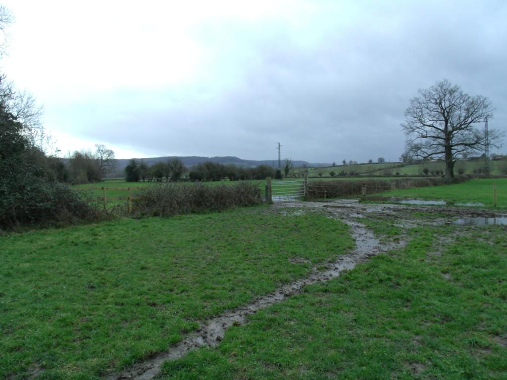 Wet farm fields