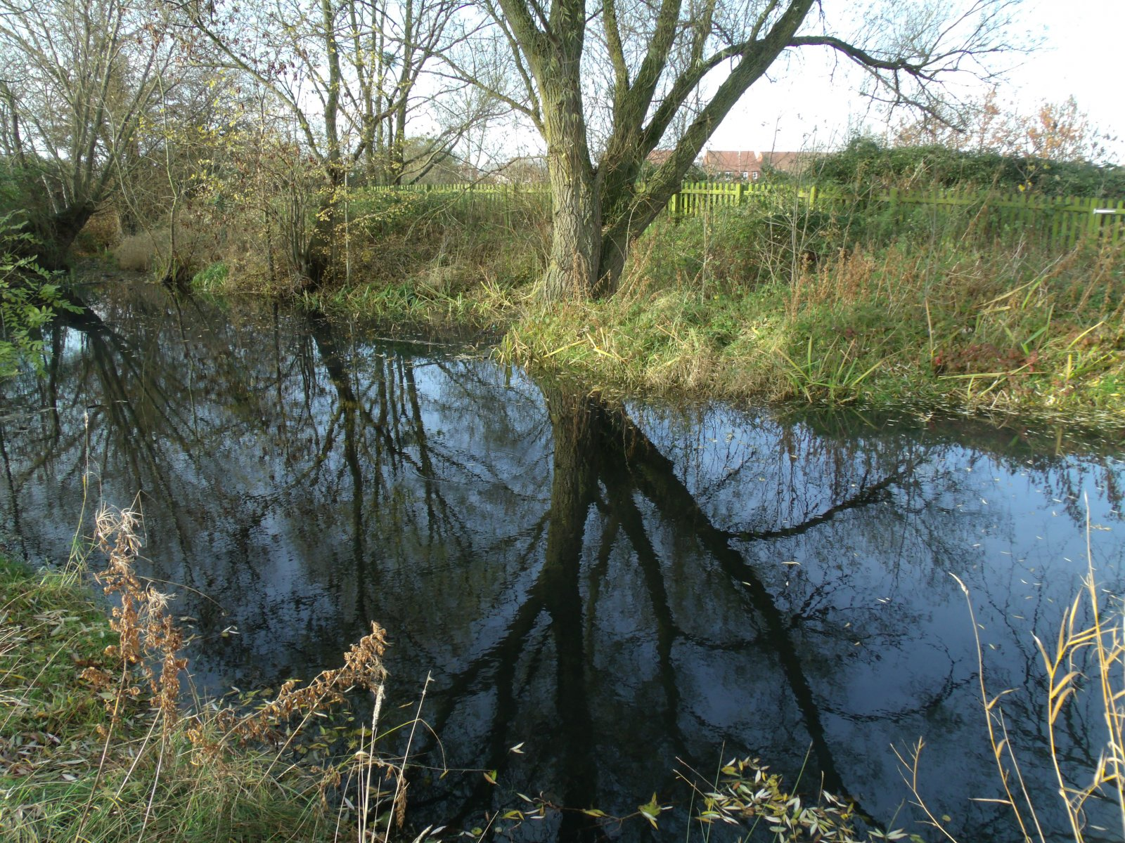 Hardwicke Pond Photos, Pound Lane