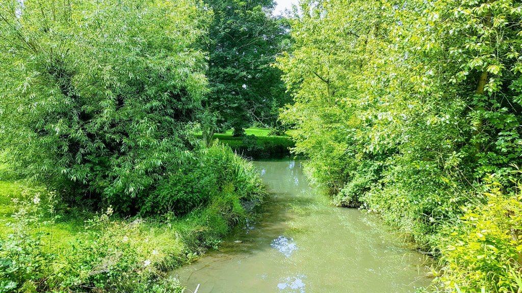 Barnwood Arbouretum Walk