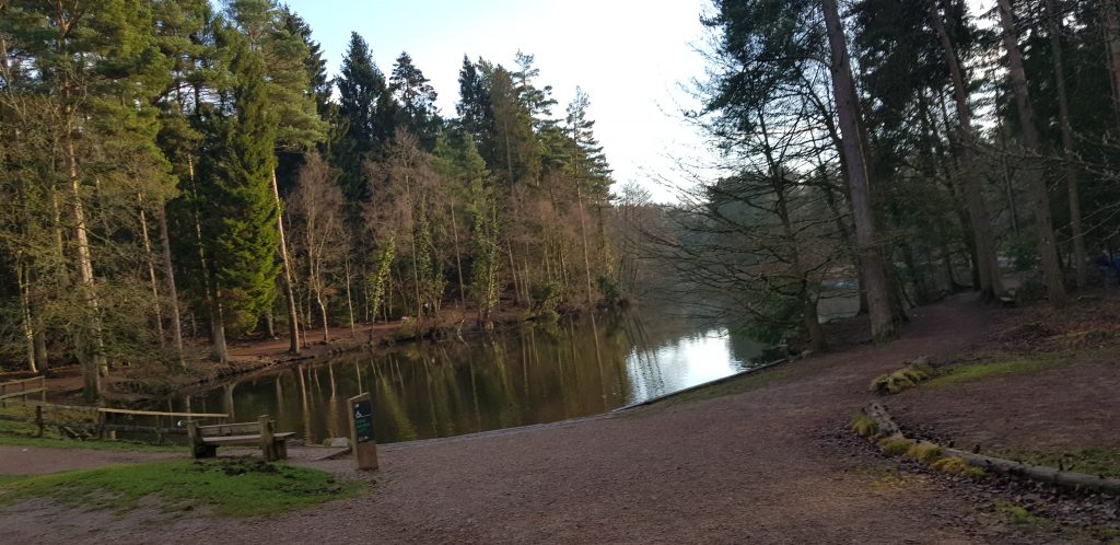 Cycle from mallards pike in the Forest of Dean