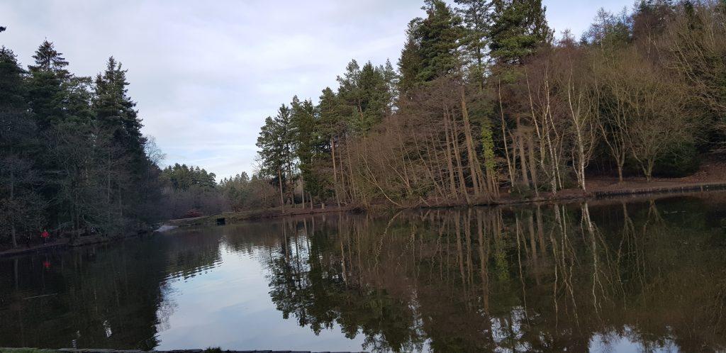 FOD Lakes