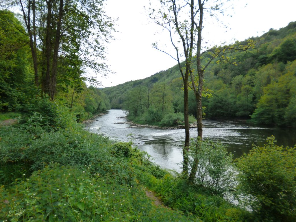 Rapids on the River Wye