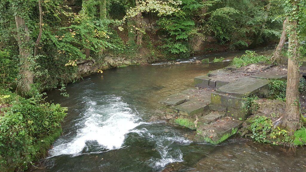 River Frome Mini-Waterfall