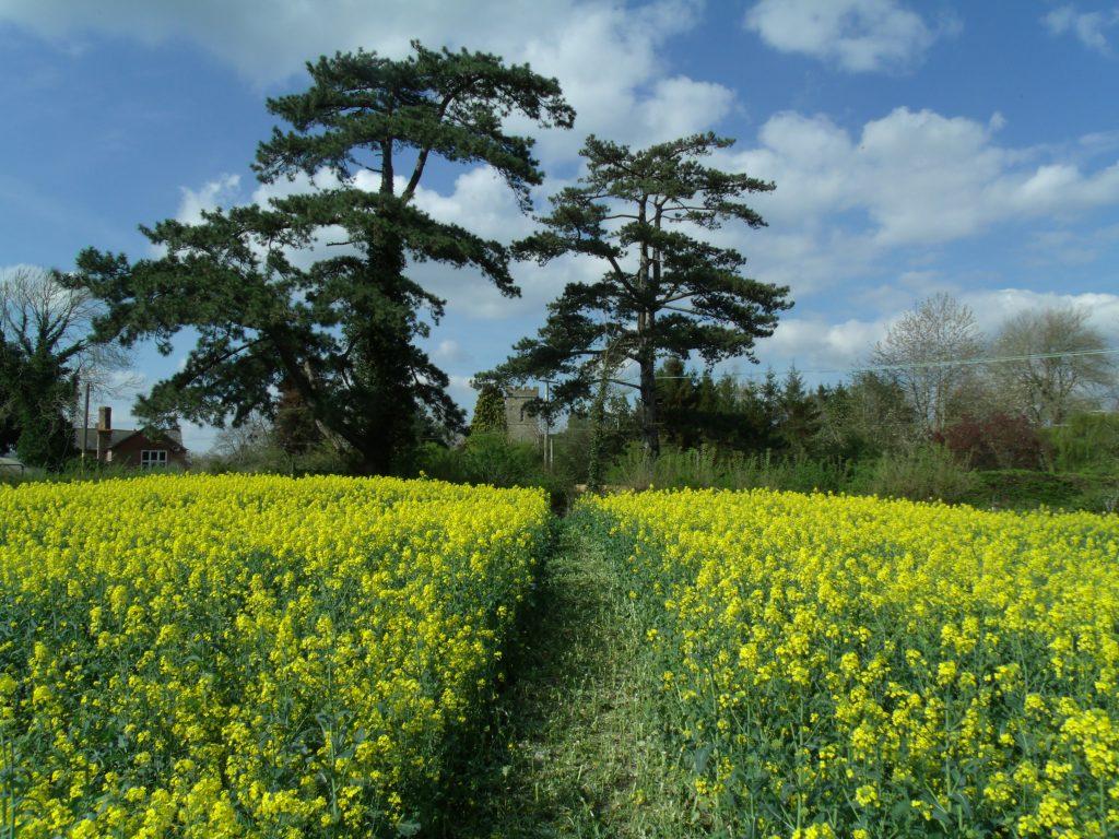 Hardwicke, Gloucestershire