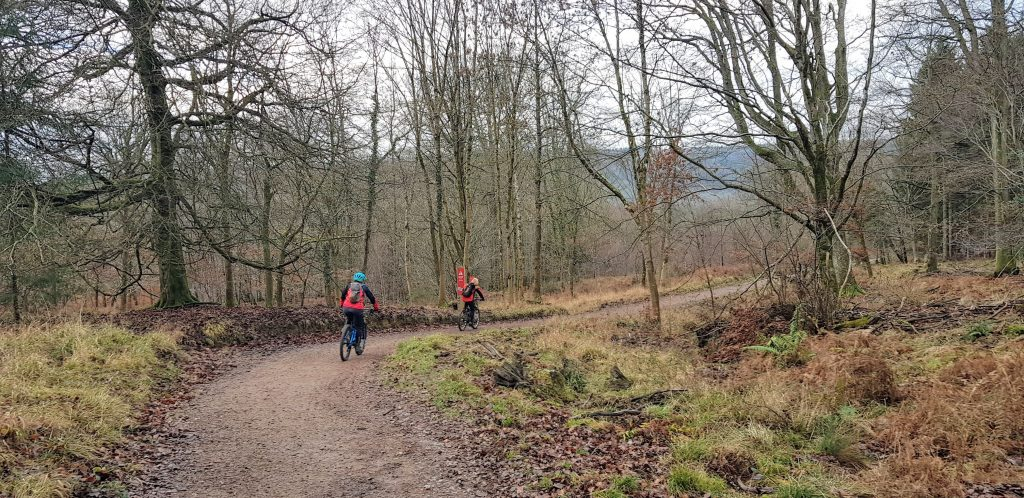 Forest of Dean MTB
