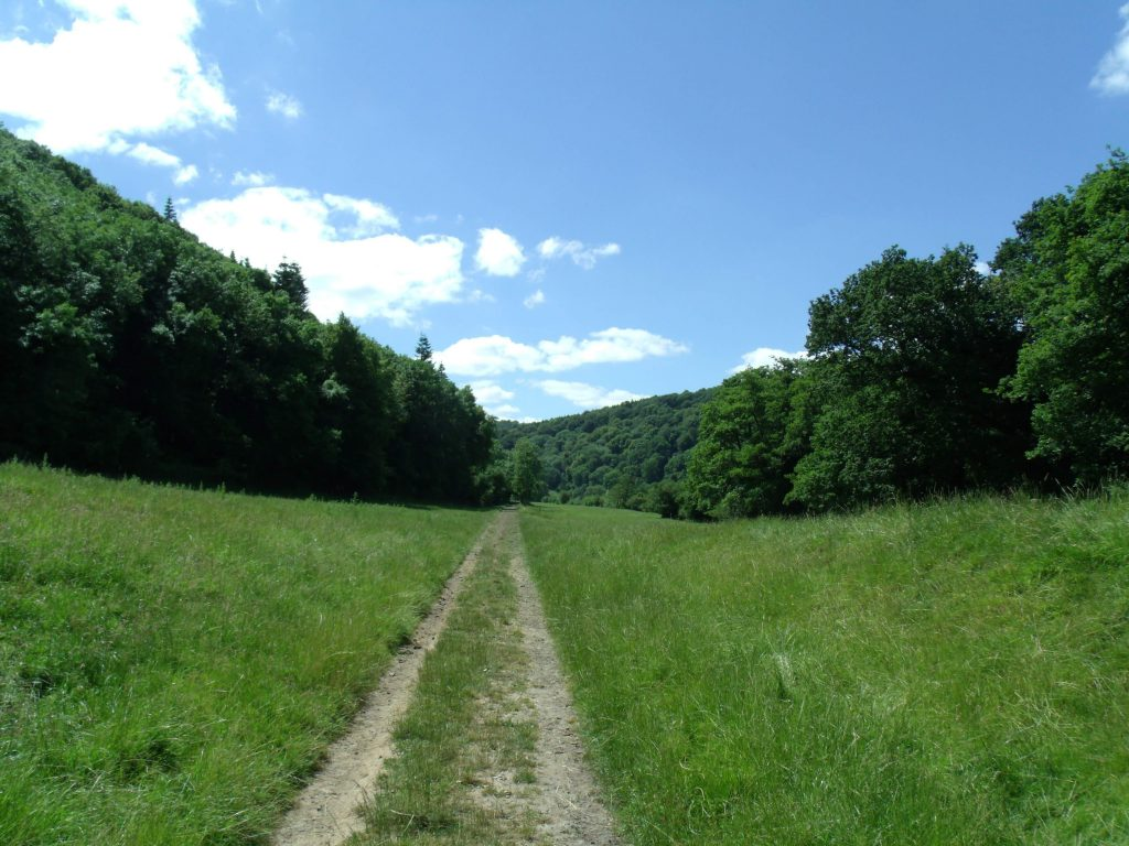 Hiking in the Wye Valley AONB