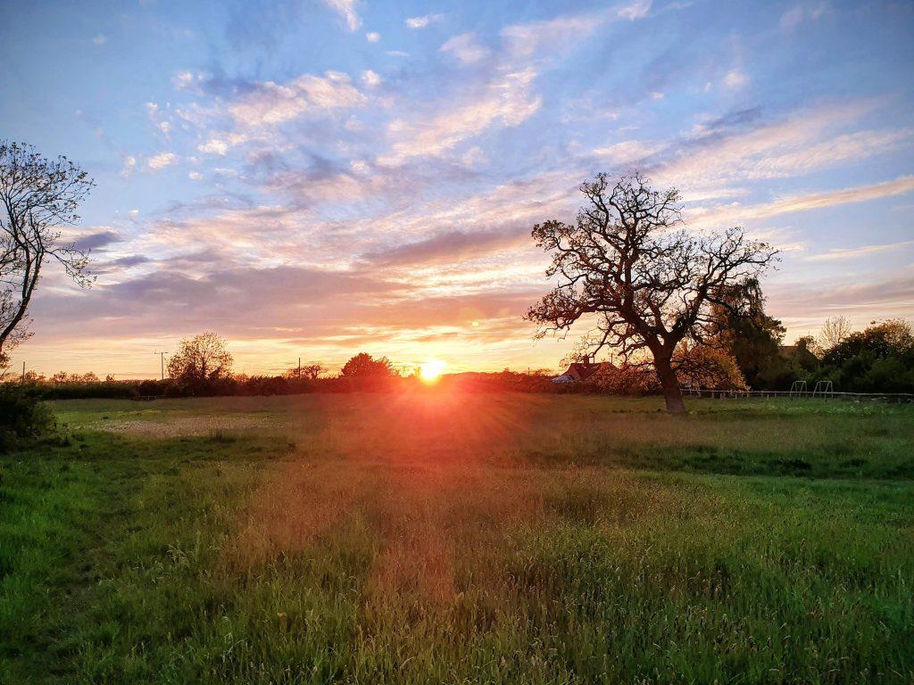 Sunset Hardwicke